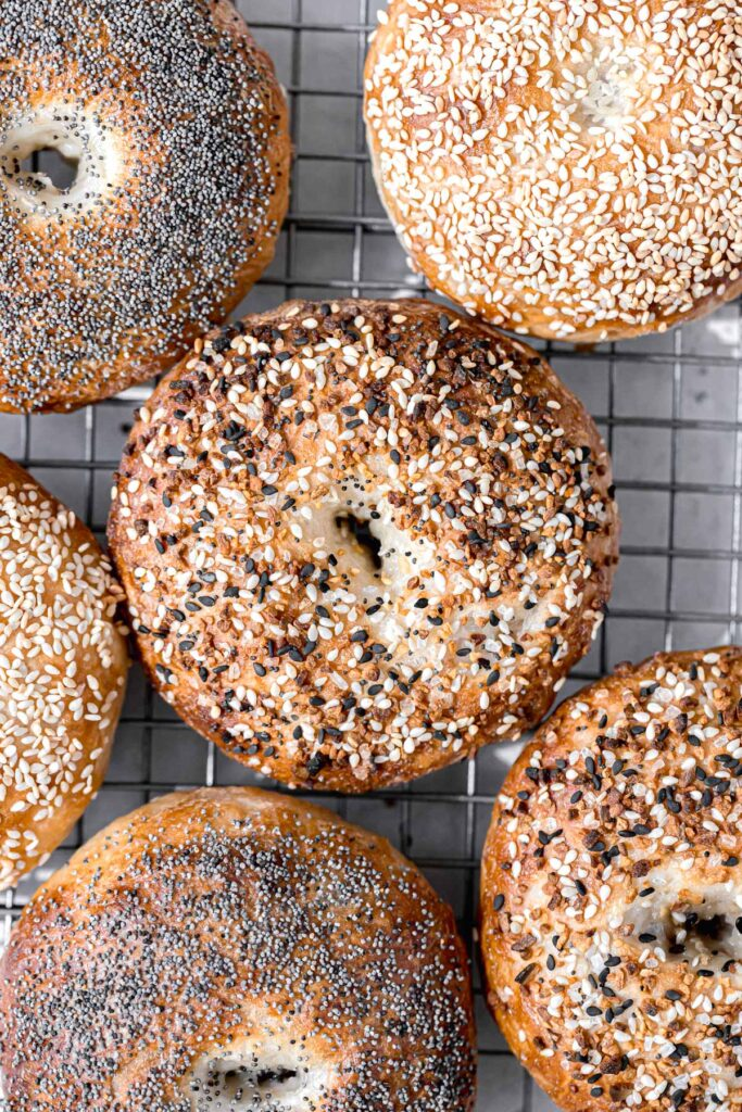 freshly baked new york style bagels on cooling rack